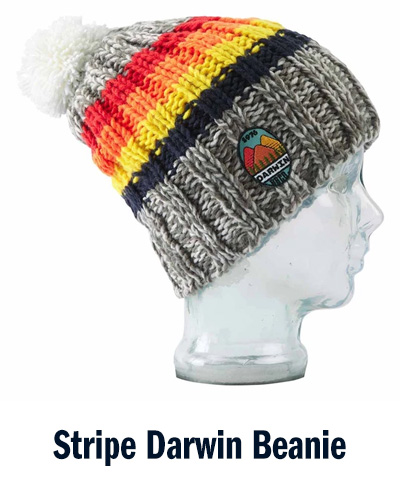 Stripe Darwin Beanie   BBCo